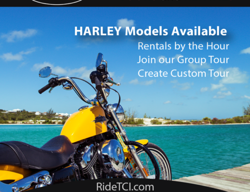 Premium Motorcycle TOURS and RENTALS coming soon to Provo!